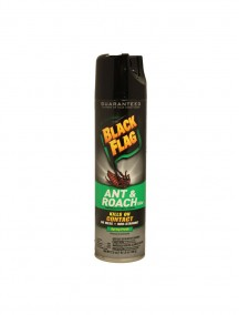 Black Flag Ant & Roach 17.5 oz Spray Spring Fresh